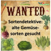 Genbänkle: Sortendetektive auf Suche nach alten Gemüsesorten